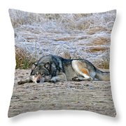 Soaking Up The Warmth 2 Throw Pillow