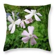 Soapwort Flowers Throw Pillow
