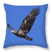 Soar Like An Eagle Throw Pillow
