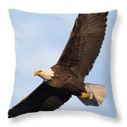Soaring American Bald Eagle Throw Pillow