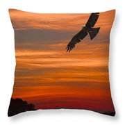 Soaring Bird Of Prey Throw Pillow