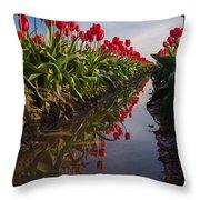 Soaring Crimson Tulips Throw Pillow