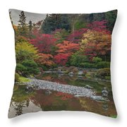 Soaring Fall Colors In The Arboretum Throw Pillow