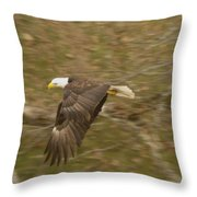 Soaring Over  Throw Pillow