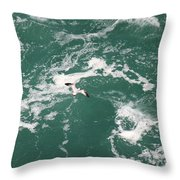 Soaring Over The Falls Waters Throw Pillow