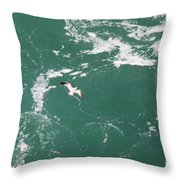 Soaring Over The Falls Waters Too Throw Pillow