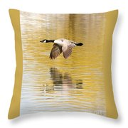 Soaring Over The River Throw Pillow