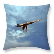 Soaring Throw Pillow