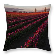 Soaring Spring Colors In Skagit Throw Pillow