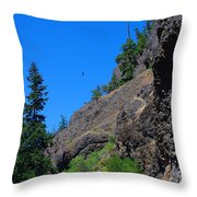 Soaring The Heights Throw Pillow