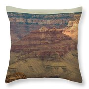 Soaring Through The Canyons Throw Pillow