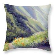 Soberanes Canyon  Throw Pillow