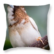 Society Finch Throw Pillow