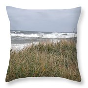 Socked By Sandy II Throw Pillow