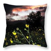 Socorro Sunset Throw Pillow