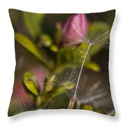 Soft And Delicate Throw Pillow