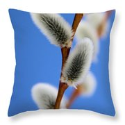 Soft And Furry Throw Pillow
