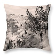 Soft And Stalwart Throw Pillow