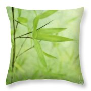 Soft Bamboo Throw Pillow by Priska Wettstein