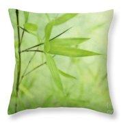 Soft Bamboo Throw Pillow