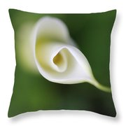 Soft Beginnings Calla Lily Flower Throw Pillow