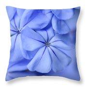 Soft Blue Throw Pillow