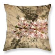 Soft Caress Of Pink Throw Pillow