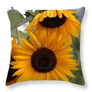 Soft Colors Sunflowers Throw Pillow