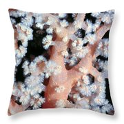 Soft Corals 6 Throw Pillow
