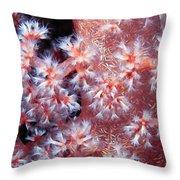 Soft Corals 7 Throw Pillow