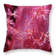 Soft Corals 8 Throw Pillow