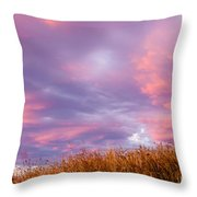 Soft Diffused Colourful Sunset Over Dry Grassland Throw Pillow