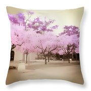 Soft Entry Throw Pillow