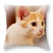 Soft Expression Throw Pillow