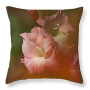 Soft Gladiolus Throw Pillow