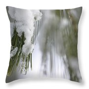 Soft Ice Throw Pillow