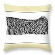 Soft Kitty Warm Kitty Throw Pillow