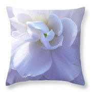 Soft Lavender Begonia Flower Throw Pillow