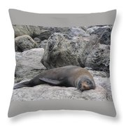 Soft Life Seal Throw Pillow