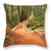 Soft Light Along The Cheakamus Lake Trail Throw Pillow