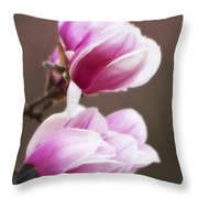 Soft Magnolia Blossoms Throw Pillow