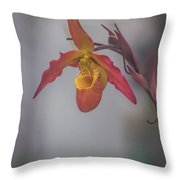 Soft One Style Throw Pillow