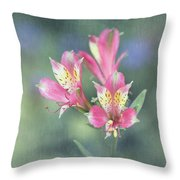 Soft Pink Alstroemeria Flower Throw Pillow