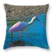 Soft Pink Spoonbill Throw Pillow