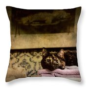 Soft Place To Fall Throw Pillow