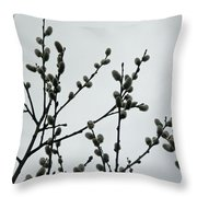 Soft Pussy Willows - Hard Gray Sky Throw Pillow