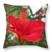 Soft Red Hibiscus With A Natural Garden Background Throw Pillow