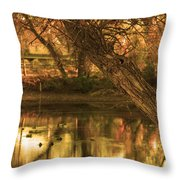Soft Reflections Throw Pillow