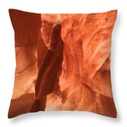 Soft Sculpted Sandstone Walls Throw Pillow by Adam Jewell