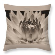 Soft Sepia Throw Pillow